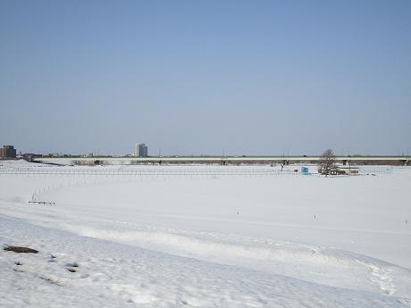 信濃川遠景